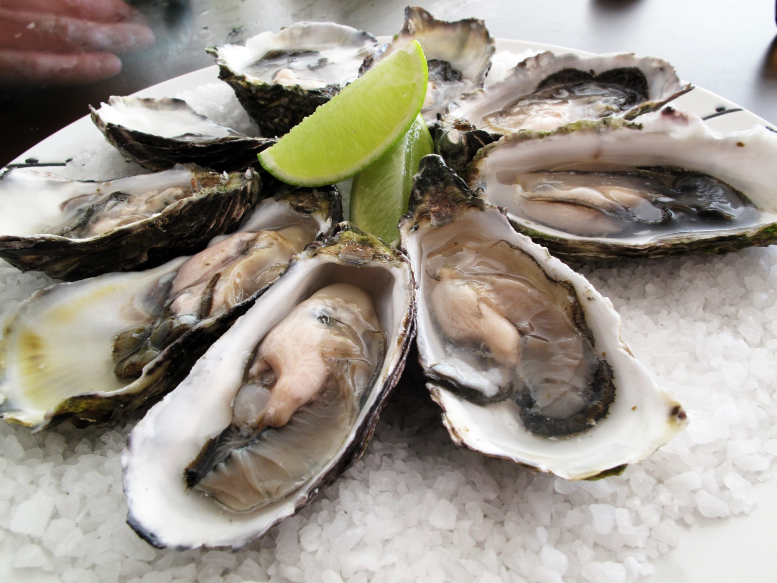 Pacific oysters on Clitoral Stimulant